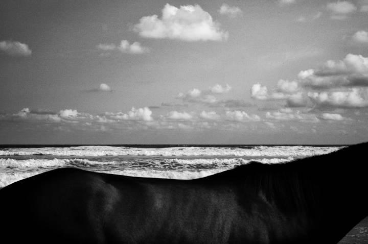 Men, Mountains, and The Sea - Rony Zakaria